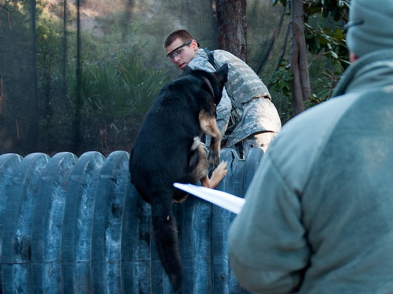 Staff Sgt. Philip Hines, 1st Special Operations Security Forces Squadron military working dog handler, and his K-9, Szuli, jump an obstacle during the Emerald Coast K-9 Clash at Hurlburt Field, Fla., Nov. 15, 2014. Participants were judged in a variety of areas including team work, navigation, tactics and K-9 control. (U.S. Air Force photo/Senior Airman Kentavist P. Brackin)