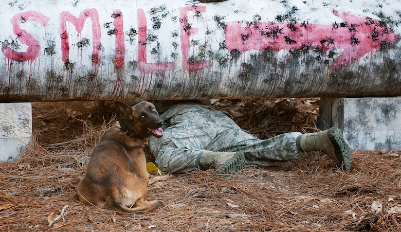 Staff Sgt. Philip Hines, with the 1st Special Operations Security Forces Squadron military working dog handler, and his partner, Szuli, crawl under an obstacle during the Emerald Coast K-9 Clash at Hurlburt Field, Fla., Nov. 15, 2014. The competition allowed Department of Defense military working dog handler teams to test their individual knowledge of dog-handling and exchange experiences with each other. (U.S. Air Force photo/Senior Airman Kentavist P. Brackin)