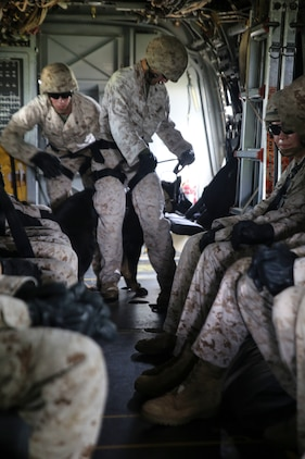 """Cpl. Nicholas Majerus, from Mazeppa, Minn., prepares to fast-rope out of an MV-22B Osprey with his military working dog, Iggi, Oct. 27 at Camp Hansen. """"I think our bond has gotten a lot stronger,"""" said Majerus. """"I've been with (Iggi) for a long time so she trusts me with everything, and she knows I would never put her in any kind of danger."""" Majerus is a working dog handler. He and Iggi are with 3rd Law Enforcement Battalion, III Marine Expeditionary Force Headquarters Group, III MEF."""