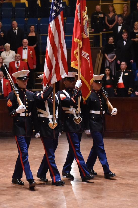The colors are presented during the Marine Corps Birthday Ball, hosted by Company A, Marine Cryptologic Support Battalion, Nov. 15, 2014, at the Sherman Street Event Center, Denver. The ball was held in honor of the Marine Corps' 239th birthday, complete with a guest speaker, dinner and dancing. (U.S. Air Force photo by Airman 1st Class Samantha Saulsbury/Released)