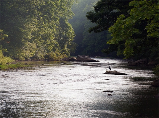Loyalhanna Creek is one of five waterways nominated for the 2015 Pennsylvania River of the Year award.