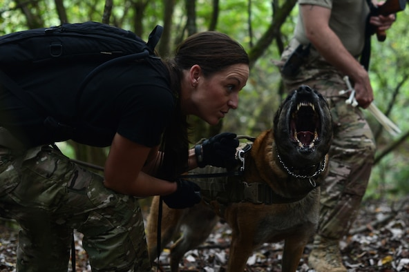U.S. Air Force Staff Sgt. Shannon Hennessy, a 52nd Security Forces Squadron dog handler and native of Colusa, Calif., controls her dog, Katya, during combat survival training on a range in Baumholder, Germany, Sept. 30, 2014. Hennessy's actions aimed to recreate scenarios pilots may find themselves in if captured. (U.S. Air Force photo by Senior Airman Gustavo Castillo/Released)
