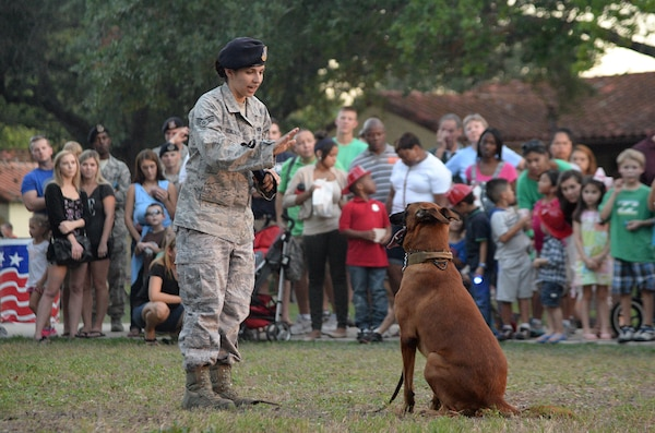 """Senior Airman Miranda Gonzales, 902nd Security Forces Squadron Military Working Dog handler, gives a MWD demonstration during """"National Night Out"""" Oct. 7, 2014, at Joint Base San Antonio-Randolph. NNO is a nationwide effort to heighten crime prevention awareness, generate support for local anti-crime programs and strengthen neighborhood spirit and police-community partnerships for a safer nation. (U.S. Air Force photo by Johnny Saldivar)"""