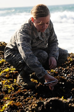 Staff Sgt. Ashley Delcambre, 30th Medical Operations Squadron public health technician, collects mussels for testing, Oct. 7, 2014, Vandenberg Air Force Base, Calif. Every month the 30th MDOS sends Airmen to collect mussels for testing, as part of the California Department of Public Health mussel watch program. (U.S. Air Force photo by Airman 1st Class Ian Dudley/Released)