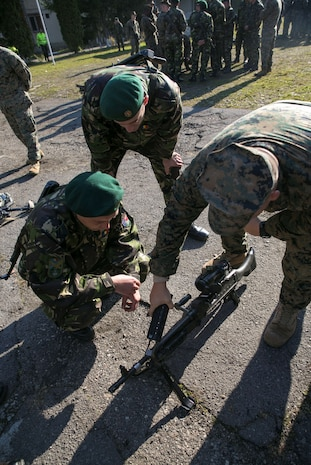 Marines and Sailors on Black Sea Rotational Force 14, with members of the Romanian Land Forces, worked together during Platinum Lynx at the Carpathian Mountains, Romania. Marines and Romanians fostered knowledge through weapons familiarization classes and mountain warfare training. (U.S. Marine Corps photo by Lance Cpl. Ryan Young/released)