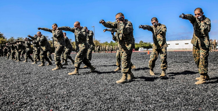 Recruits with Echo Company, 2nd Recruit Training Battalion, perform the rear-hand punch technique during their Marine Corps Martial Arts Program test at Marine Corps Recruit Depot, Oct. 8. After recruit training the recruits can move toward earning a MCMAP black belt.