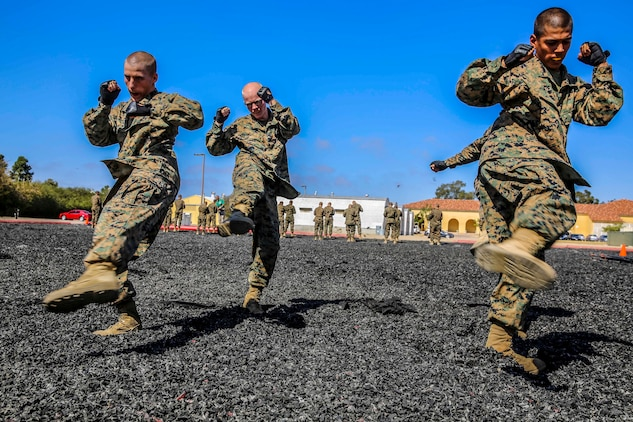Recruits with Echo Company, 2nd Recruit Training Battalion, execute the round kick technique during their Marine Corps Martial Arts Program test at Marine Corps Recruit Depot, Oct. 8. After recruit training the recruits can work toward earning a MCMAP black belt.