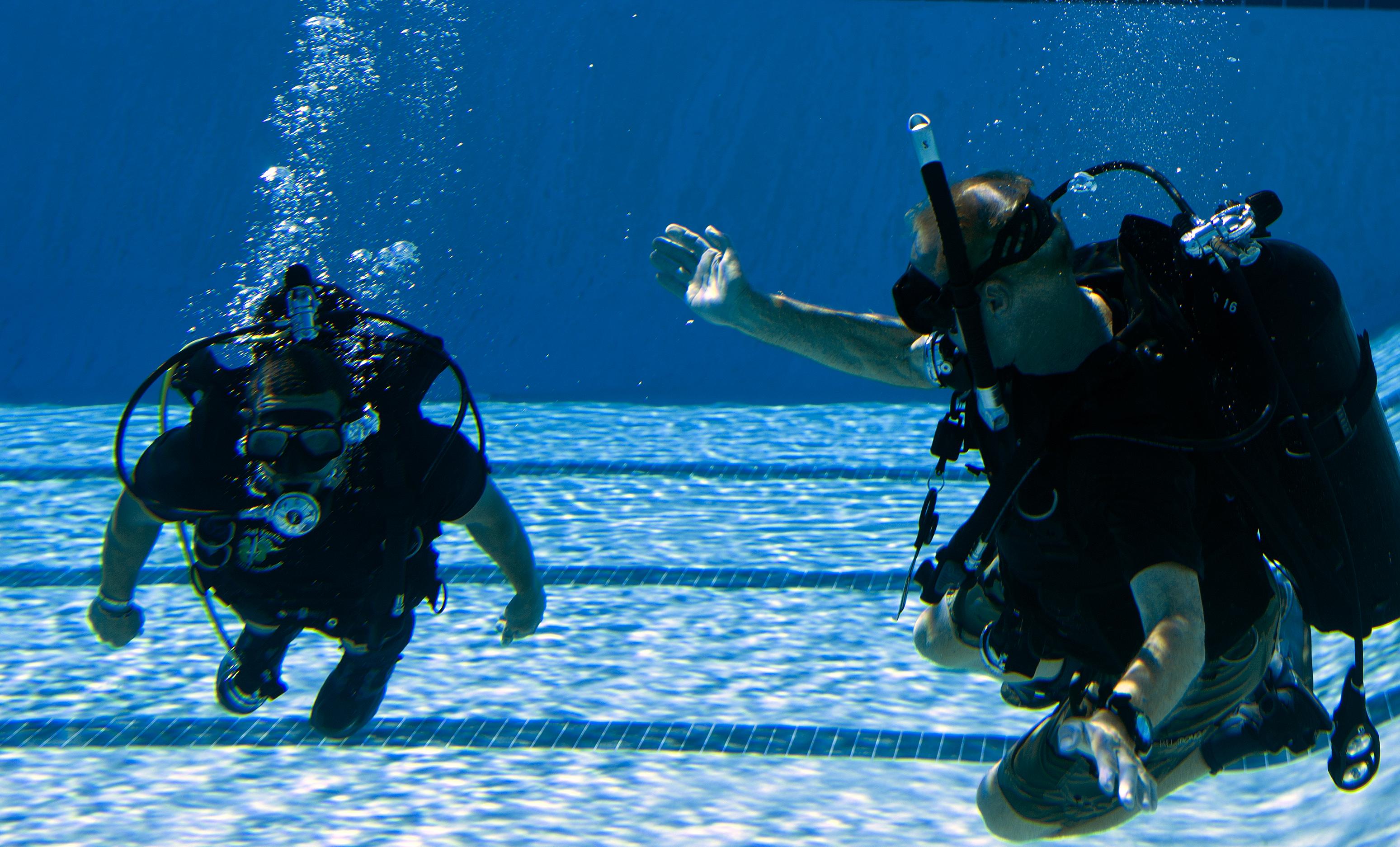 Image result for diving instructor