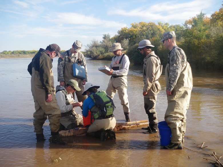 ALBUQUERQUE, N.M., -- District Commander Lt. Col. Patrick Dagon, far right, and Maj. Jason Melchior look on as fish are counted, Oct. 20, 2014.