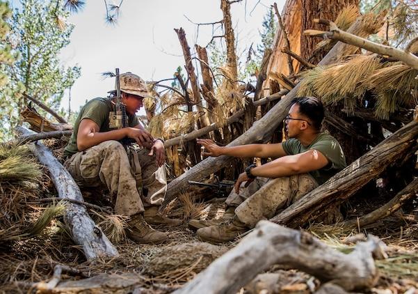 U.S. Marine Pfc. Ryan Iglesias, left, and Lance Cpl. Jonathan Ripoyla strategize on improving their survival shelter during Mountain Exercise 2014 aboard Marine Corps Mountain Warfare Training Center in Bridgeport, Calif., Aug. 28, 2014. Iglesias and Ripoyla are both infantry riflemen assigned to 2nd Platoon, India Company, 3rd Battalion, 1st Marine Regiment. Marines with 3rd Battalion, 1st Marine Regiment will become the 15th Marine Expeditionary Unit's ground combat element in October. Mountain Exercise 2014 develops critical skills the battalion will need during deployment. (U.S. Marine Corps photo by Sgt. Emmanuel Ramos/Released)