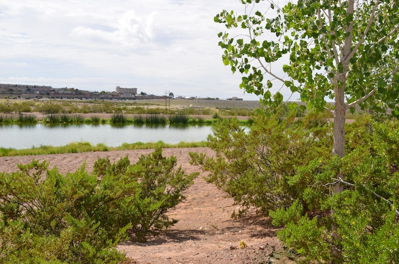 LAS CRUCES, N.M., -- The project's wetland area. The Las Cruces Dam is visible in the background on the right.