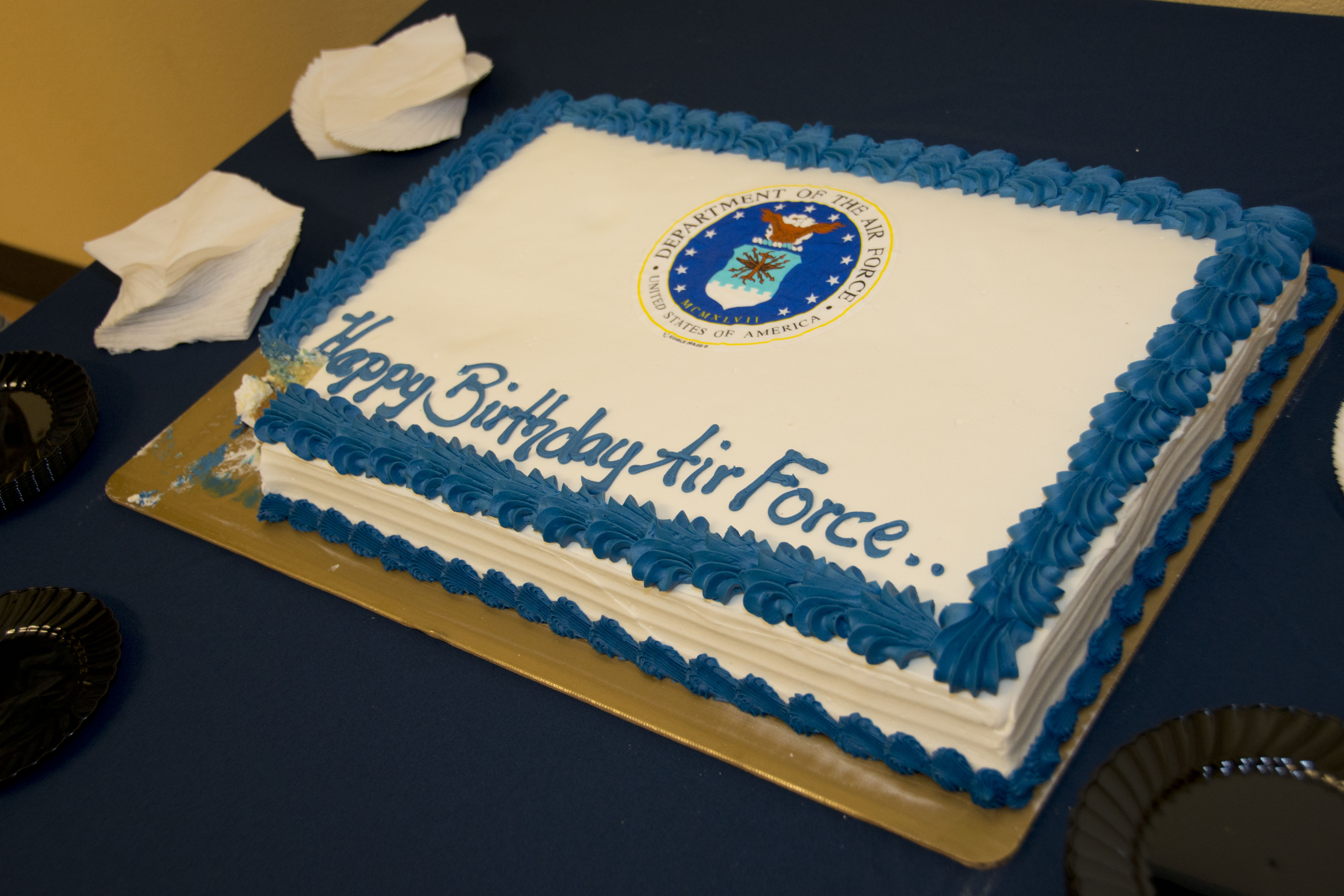 Homestead pays tribute to air force birthday with youngest for Air force cakes decoration