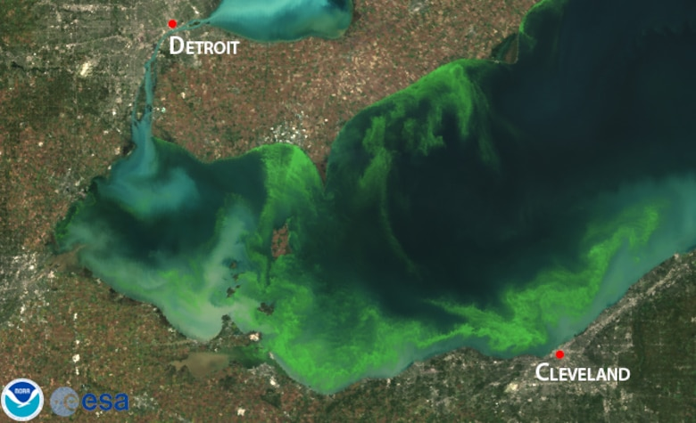 "The U.S. Army Corps of Engineers Buffalo District announces the release of a report itled: ""Influence of Open-Lake Placement of Dredged Material on Western Lake Erie Basin Harmful Algal Blooms."""