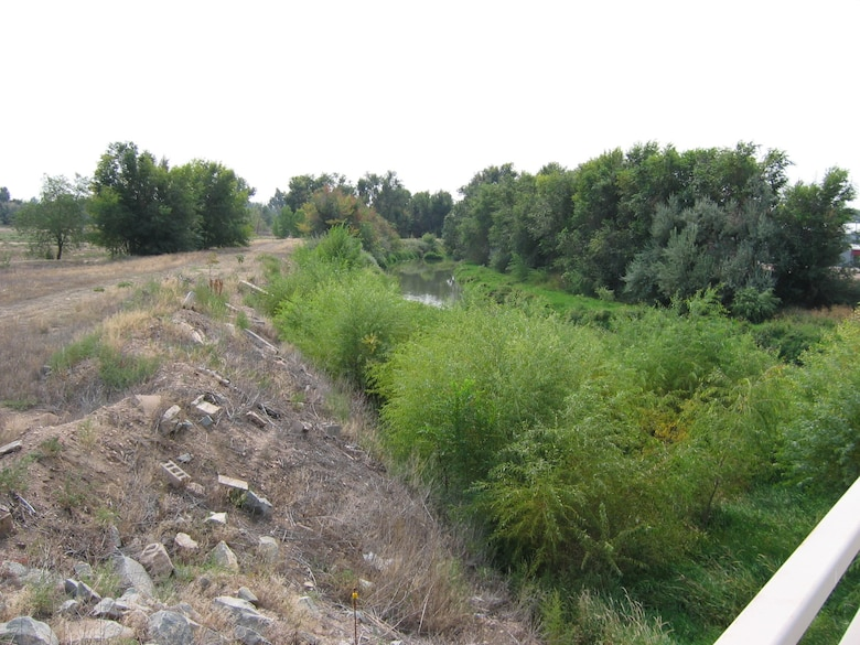 Berms along the Cache la Poudre in the study area are severely degraded by debris and invasive vegetation, are not certified as an engineer structure, and could potentially fail during a major flood event.