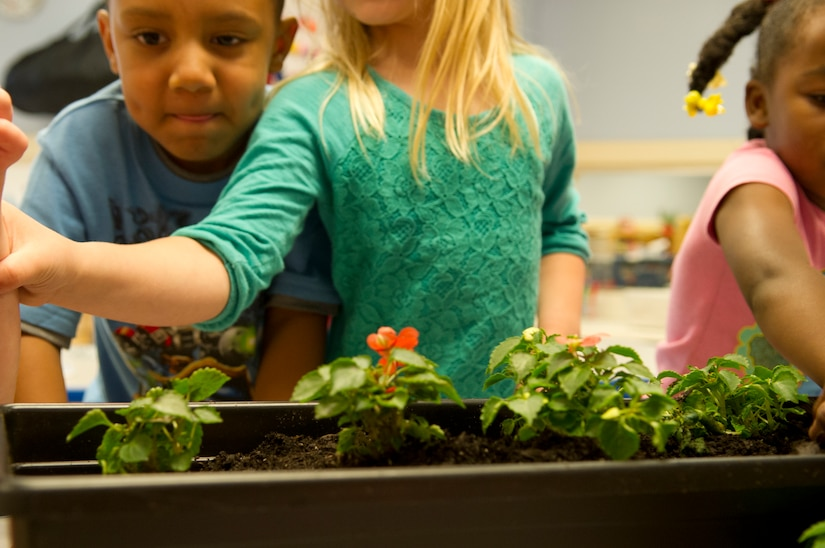 Children gather around flowers at the Child Development Center II at Joint Base Andrews, Md., for Earth Day, April 22, 2015. The children repotted approximately 60 pansies and marigolds, with plans to plant approximately 100 sunflower seeds outside in the near future. (U.S. Air Force photo/Senior Airman Mariah Haddenham)