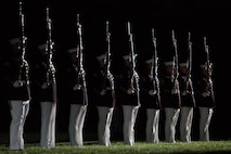 Washington, D.C. - The U.S. Marine Corps Silent Drill Platoon performs during a Friday Evening Parade at Marine Barracks Washington, D.C., April 25, 2015. (U.S. Marine Corps photo by Cpl. Christian Varney/Released)