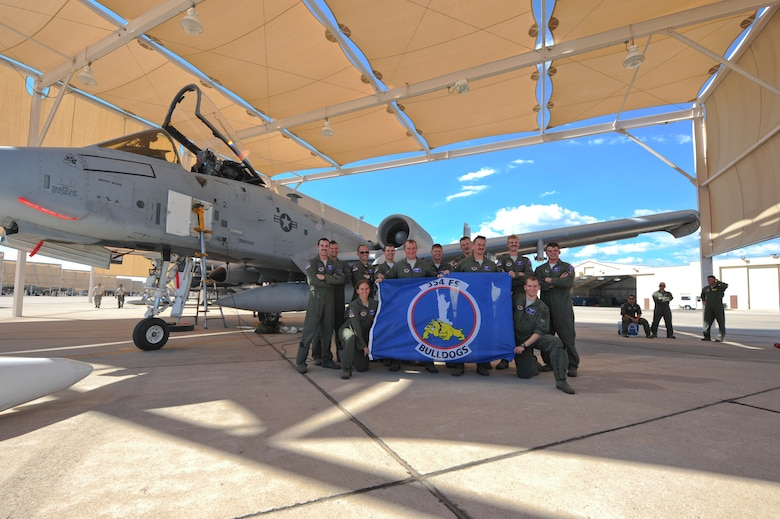 Twelve A-10 Thunderbolt II pilots from the 354th Fighter Squadron pose for a photo next to an A-10 under a sunshade at Davis-Monthan Air Force Base, Ariz., Aug. 4, 2015.  Twelve of the 354th Bulldogs? A-10s and their pilots returned after a 6-month-long deployment to Europe where they flew over 1,500 missions throughout 21 countries as part of the Theater Security Package to Europe in support of Operation Atlantic Resolve. (U.S. Air Force photo by Senior Airman Chris Massey/Released)