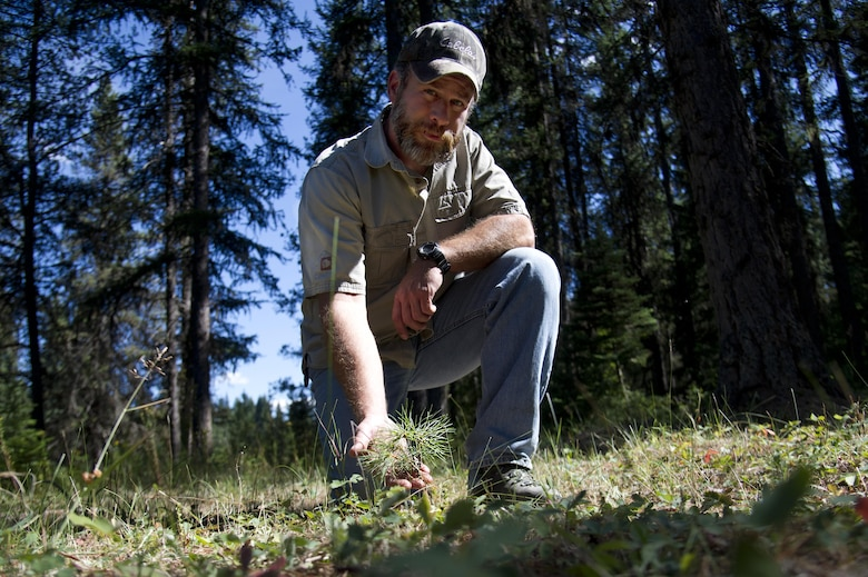 Todd Foster, the 336th Training Group training area manager, poses with a sapling July 29, 2015, at Colville National Forest, Wash. With efforts from Foster and Rick Hall, an Air Force liaison to the U.S. Forest Service, between 500 and 1,200 trees per area, have been planted in U.S. Air Force Survival School training areas giving nature a jumpstart by 10 to 15 years. (U.S. Air Force photo/Airman 1st Class Nicolo J. Daniello)