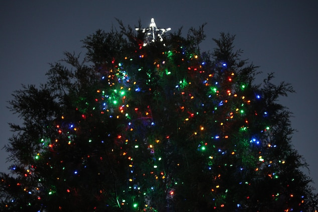 16th Annual Christmas Tree Lighting Sparks Holiday Cheer