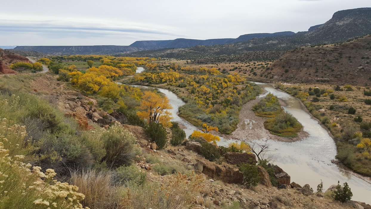 ABIQUIU LAKE, N.M. – Fall colors below Abiquiu Dam. Photo by Jeremy Decker, Oct. 28, 2015.
