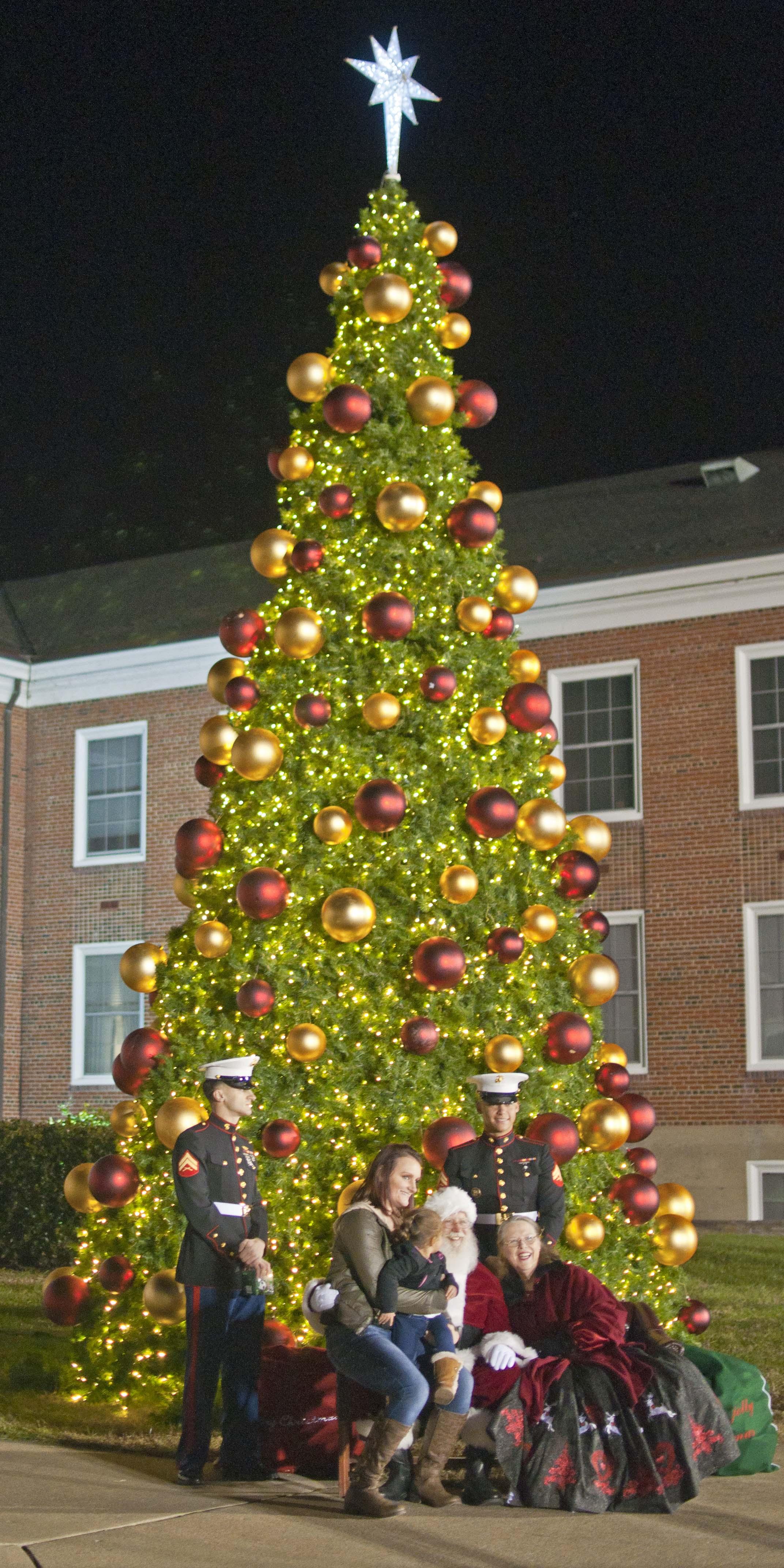 Christmas Tree Farm In Virginia