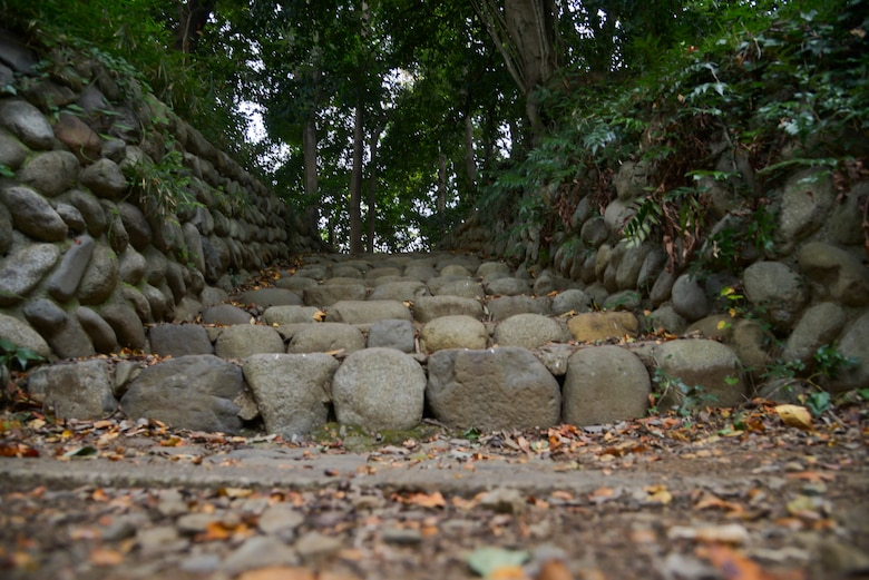A rock stairway leads to a path on a hiking trail within the Takahata Fudo Temple grounds in Hino City, Japan, Nov. 1, 2015. There are 88 Buddhist statues along the trail that lead to an observation point and the Daishido Temple. (U.S. Air Force photo by Senior Airman David Owsianka/Released)
