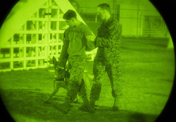 Lance Cpl. Colten Corsetti, right, military working dog handler with Headquarters and Headquarters Squadron, escorts Cpl. Brendon Teague, military working dog handler with H&HS, while Corsetti's K-9 provides security during night training at Marine Corps Air Station Iwakuni, Japan, Dec. 9, 2015. To ensure the safety of personnel on the air station, this training is conducted to keep military working dogs familiarized with the installation as its landscape continues to develop with the Defense Policy Review Initiative. Military working dogs are trained in different abilities such as locating narcotics or explosives and conducting patrol work.