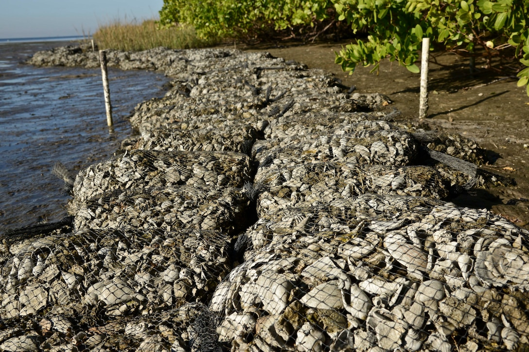 Bags of shells lay along the shoreline at MacDill Air Force Base, Fla., Dec. 11, 2015. Fourteen tons of shells were gathered, bagged, transported and used to build an oyster reef. (U.S. Air Force photo by Senior Airman Vernon L. Fowler Jr./Released)