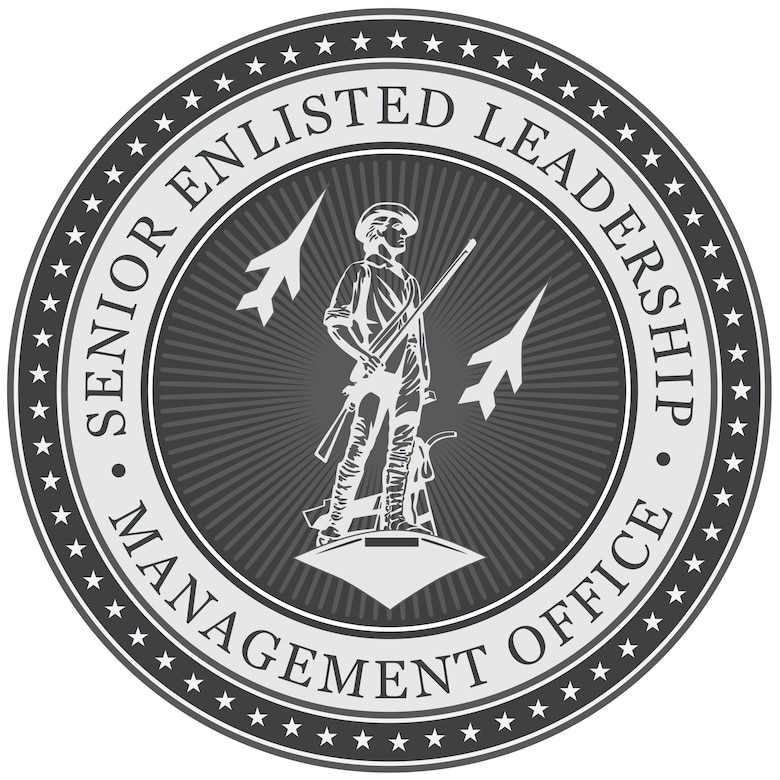 The Air National Guard Senior Enlisted Leadership Management Office was established to ensure that Air National Guard senior enlisted leaders receive the same opportunities for development currently offered to the active component. This would better allow the ANG's voice to be heard throughout the Air Force. (U.S. Air National Guard graphic illustration)