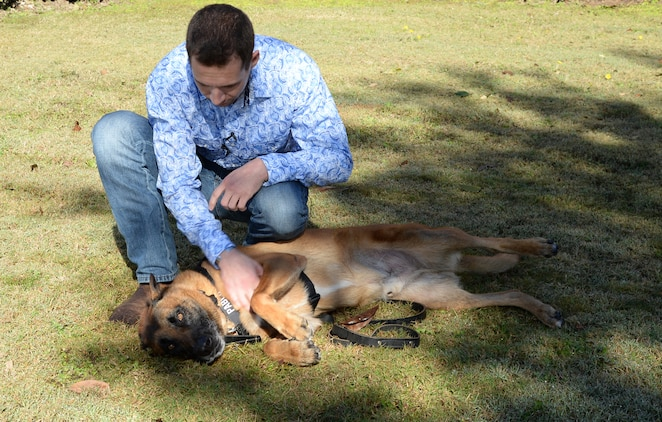 Former Marine Corps handler, David Pond, plays with Pablo, a former military working dog, with Marine Corps Logistics Base Albany's Marine Corps Police Department, after officially adopting him during a ceremony held here, Dec. 15.