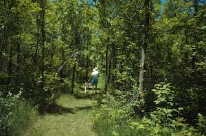 Walker on trail