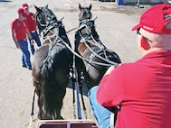Sgt. Nathaniel Boyd, Commanding General's Mounted Color Guard, sits at muleskinner position as his teammates, Sgt. Sven Kramer and Sgt. Robert Harvey, hook up the Percheron draft team to one of the unit's wagons Dec. 9 at Fort Riley.  New members practice driving to build a solid bond with the horses and confidence as a cohesive team.  As seasoned members of the CGMCG begin to transition out of the unit, new members are stepping up to serve as muleskinners and swampers – teams that man the unit's wagons.