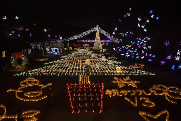Station residents from Marine Corps Air Station Iwakuni, Japan, visited the Hiroshima Botanical Garden in Hiroshima City for a Christmas lighting event Dec. 23, 2015. After lights illuminated the garden, visitors walked on an elevated platform to view the grand Christmas tree display formed below.