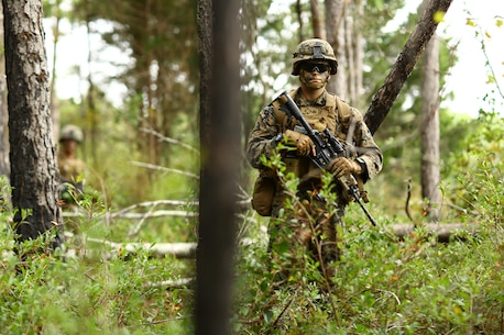 U.S. Marines assigned to 2nd Battalion, 6th Marine Regiment patrols during a tactical recovery of aircraft and personnel mission part of Exercise Bold Alligator on Atlantic Airfield, N.C., Nov. 6, 2014. Exercise Bold Alligator is a multinational, synthetic naval amphibious exercise designed to train across the full range of amphibious capabilities in order to provide unique and contemporary solutions to global challenges.