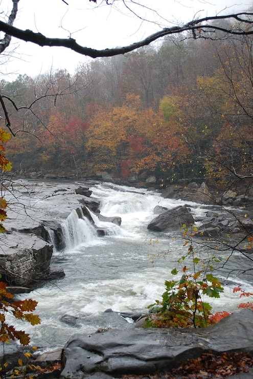 Falls along the inflow of Tygart Lake.