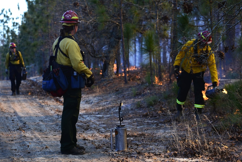 Members of the prescribe burn team light fires on the forest floor during prescribed burning Jan. 28, 2015, at Poinsett Electronic Combat Range, in Sumter, S.C. The team was scheduled to burn throughout the week while the weather permitted. (U.S. Air Force photo/Airman 1st Class Diana M. Cossaboom)