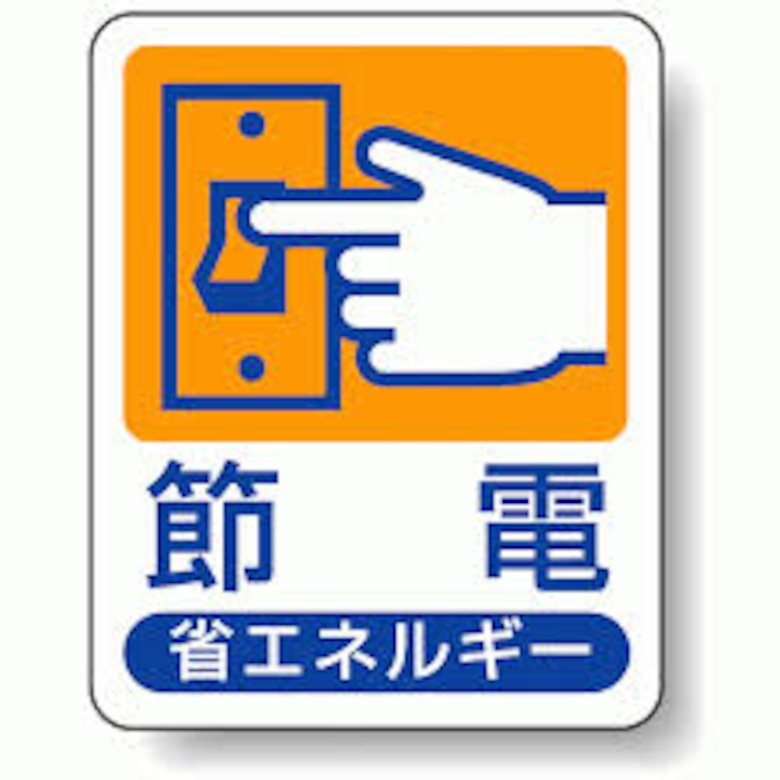 "Much of Japan's electricity savings were initialized by METI's Energy Conservation Awareness Campaign known as ""Setsuden"" (""saving electricity"").  Simple conservation measures such as increasing temperatures in homes and offices, ""thinning"" lighting by removing some of the bulbs and tubes, shutting down big screens and cutting exterior lighting enabled Japan to dramatically reduce power demand almost overnight. (Graphic courtesy of Government of Japan)"