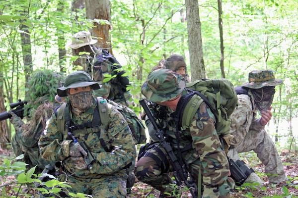 Georgia counterdrug forces hit woodlands for tactical training