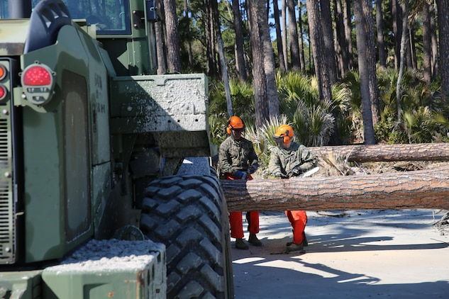 Marines with Marine Wing Support Squadron 273 assisted in the beautification of Hunting Island Beach, St. Helena Island, S.C., Feb. 17-20. Marines with MWSS-273 are using their equipment to help with erosion control by removing man-made and natural debris.