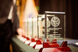 Program Awards, 2015 Annual Army Worldwide Antiterrorism Conference.