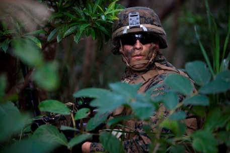 U.S. Marines with Company E, Battalion Landing Team, 2nd Battalion 4th Marines, 31st Marine Expeditionary Unit (MEU), sits still in the middle of a tree line during a vertical assault as part of MEU Exercise (MEUEX), in Combat Town, Okinawa, Japan, Dec 10, 2014. BLT 2/4 is conducting training in preparation of their upcoming spring patrol. (U.S. Marine Corps photo by GySgt Ismael Pena/Released)