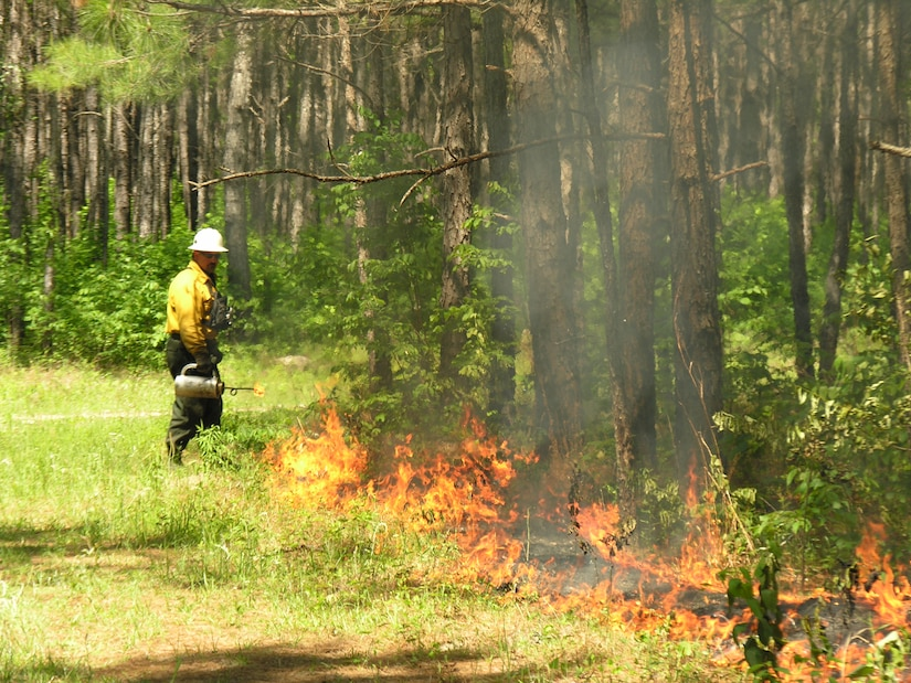 Be prepared to smell some wood smoke around Joint Base Charleston (JB CHS) Weapons Station this winter.  Wood smoke usually indicates that a prescribed fire is being conducted by the Station's Natural Resources personnel somewhere on the Weapon Station's 11,000 acres of managed timberlands. (Courtesy photo)