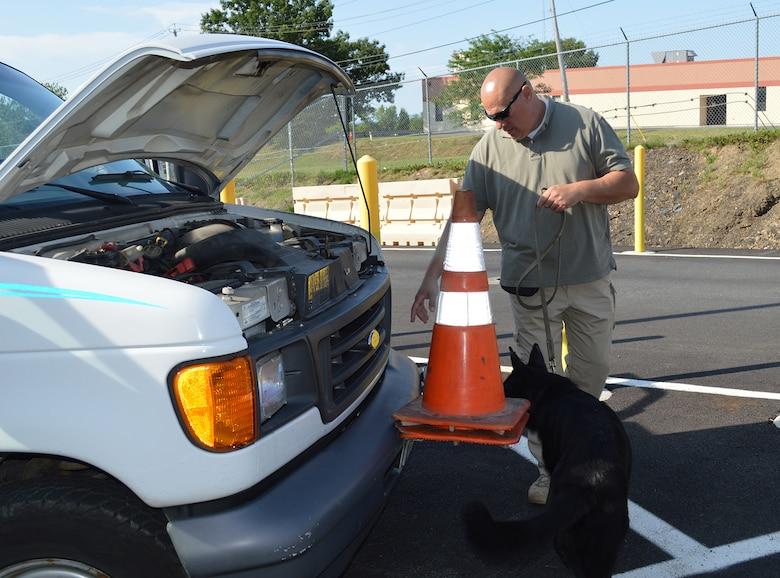 Tech. Sgt. Scott Everson and Aggie search a vehicle at the front gate on July 16, 2015, at Stratton Air National Guard Base, New York. Everson, a loadmaster with the 139th Airlift Squadron, works as a K-9 handler in a private security company on the civilian side with Aggie, an explosive detection K-9. Everson was given approval by 109th Airlift Wing leadership to train Aggie at the base, giving the 109th Security Forces Squadron an added measure of security at the front gate. Aggie will be assisting with random vehicle inspections over the next few months while at the same time receiving real-world training. (U.S. Air National Guard photo by Tech. Sgt. Catharine Schmidt/Released)