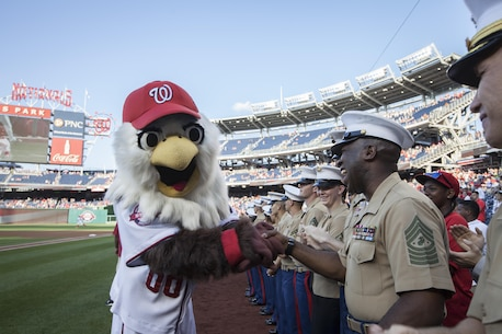 The Sergeant Major of the Marine Corps, Ronald L. Green, attends Marine Corps Day at National's Park, Washington, D.C., July 21, 2015.  (U.S. Marine Corps photo by Sgt. Melissa Marnell, Office of the Sergeant Major of the Marine Corps/Released)