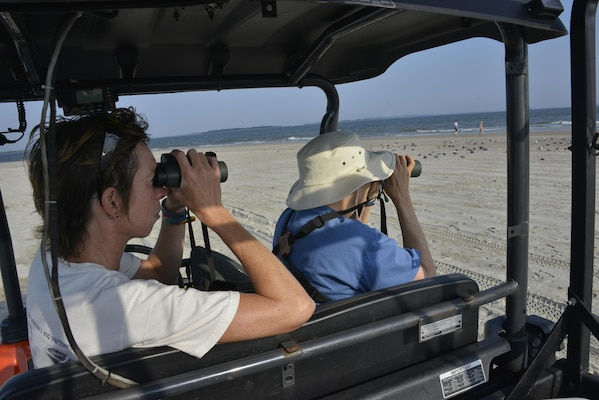 Ellie Covington, a biologist with U.S. Army Corps of Engineers Savannah District, and Sandy Beasley, a volunteer with U.S. Fish & Wildlife, count birds at Tybee Island, June 30. Savannah District biologists like Covington visit the island three times a month to monitor the number of birds following Tybee Island's beach renournishment in December 2014.