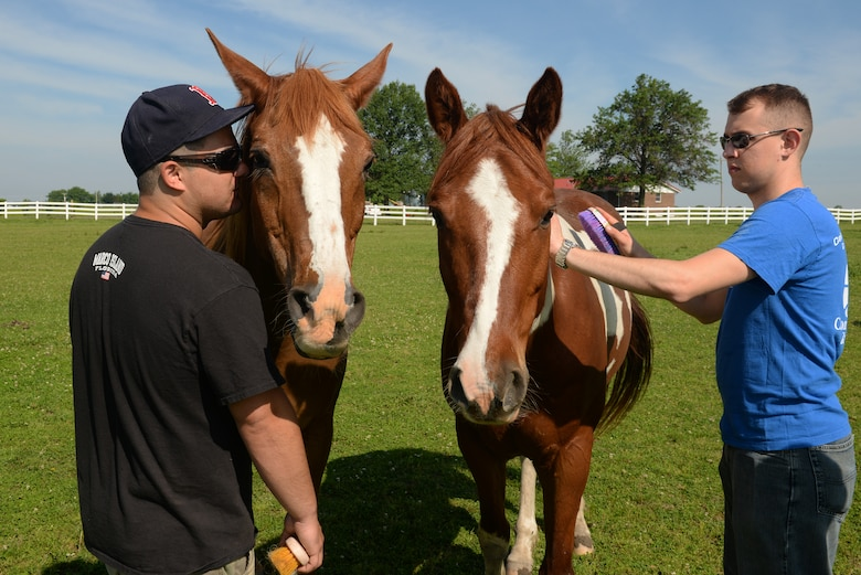 Senior Airmen Joshua Rose and Anthony Carmignani, 375th Operations Support Squadron Air Traffic Controllers, brush Cherokee and Jasper, two of the nine horses at Chakota, a therapeutic horseback riding center, Germantown, Illinois, May 28, 2015. Rose has volunteered at Chakota before, bringing a group of Airmen with him to enhance the facility. This is one of the several instances where he rallies volunteer groups to make a bigger impact on community projects. (U.S. Air Force photo by Airman 1st Class Erica Holbert-Siebert)