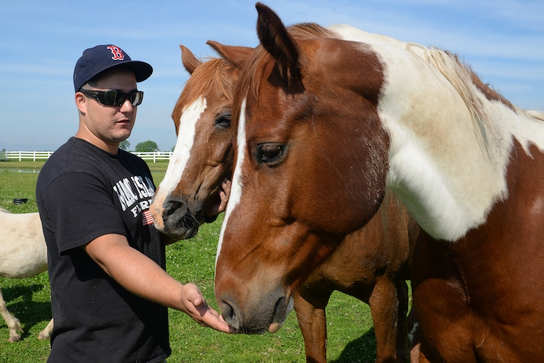 Senior Airman Joshua Rose, 375th Operations Support Squadron Air Traffic Controller, brushes some of the nine horses at Chakota, a therapeutic horseback riding center, Germantown, Illinois, May 28, 2015. The Acushnet, Massachusetts native has volunteered at Chakota before, bringing a group of Airmen with him to enhance the facility. (U.S. Air Force photo by Airman 1st Class Erica Crossen)