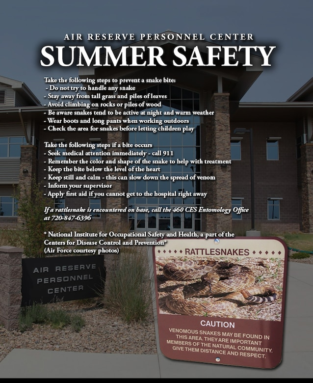 ARPC rattlesnake safety tips > Air Reserve Personnel Center