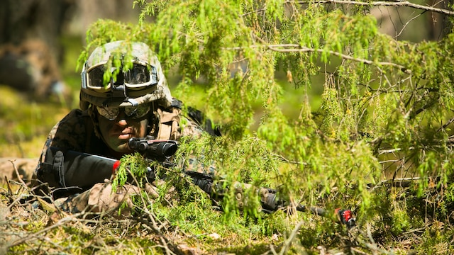 Lithuanian forces are teamed with U.S. Marines from the Black Sea Rotational Force during Exercise Saber Strike at the Pabrade Training Area, Lithuania, June 9, 2015. The allies coordinated multipronged attacks on enemy positions during the exercise.