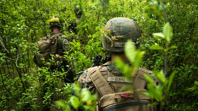 Lithuanian forces are teamed with U.S. Marines from the Black Sea Rotational Force during Exercise Saber Strike at the Pabrade Training Area, Lithuania, June 9, 2015. The allies coordinated multipronged attacks on enemy positions with other participating forces during the exercise.